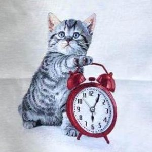 Dettaglio trittico gatto e orologio